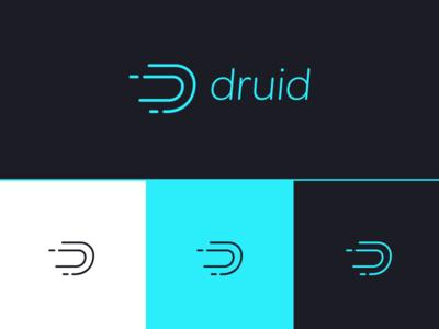 Branding | Druid & Color System