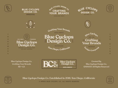 Branding | A Diverse Brand for BCDC