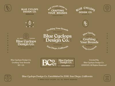 Branding | A Diverse Brand for BCDC badgedesign marketing logodesign logotype lockup badges badge mark logos style exploration illustrator freelance vector icon typography logo branding design