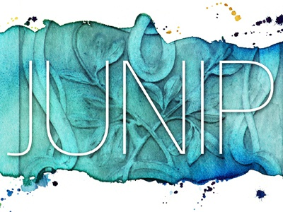 Junip poster watercolor band poster hand-painted color water architecture illustration