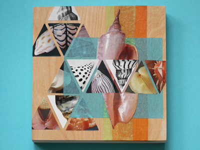 Shell Collage animal sea orange teal shells shell cut paper collage