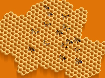 Honeycomb and Bees - Illustration