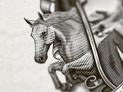 Horse illustration arabic coat of arms horse banner crosshatching etching sketch vintage dalibass custom hand-drawn