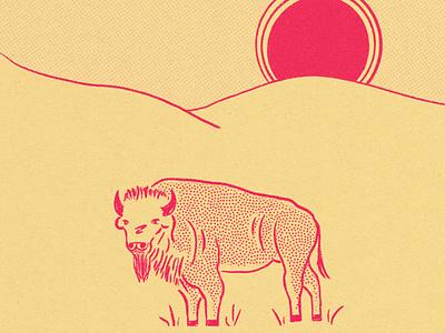 Buffalo vintage illustration