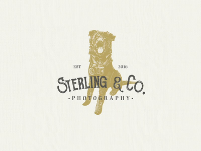 Photography Logo | Design photography logo illustration design logo mark adobe illustrator logo design logodesign timelapse design branding illustration vintage logo business logo logo designer