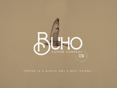 Buho | Coffee Company | Logo vector illustration art coffee illustration crosshatch etching coffee logo design logo design vintage logo illustration logo designer business logo