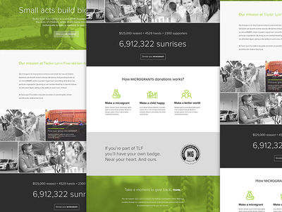 Homepage Concept for Taylor Lynn Foundation