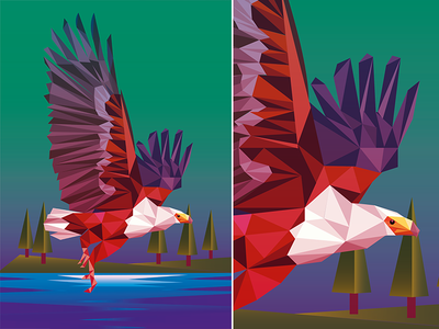 Eagle_Low Poly product illustration art illustration eagle lowpoly low poly lowpolyart