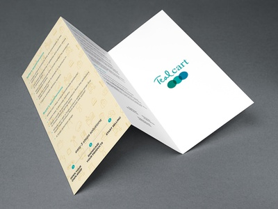 Tri Fold Brochure Design for Tealcart