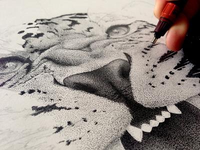 Leopard, work in progress stippling dots black animal leopard illustration drawing