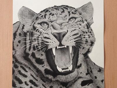 Leopard illustration leopard dots stippling black lines animal a3 rotring