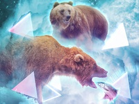 Bear and Salmon 2/3 of 'Predators and Prey' with Kris Tate