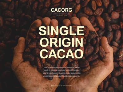Cacao Organics