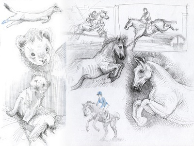 preps prep illustration sketching hatching pencil ride ferret horce drawing draft sketches sketch pencil drawing hand drawing