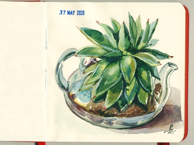Plant in glass pot from live dtawing art traditional editorial illustration book illustration sketchbook sketching sketch watercolour pot plant watercolor