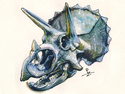 triceratops 💀 character design ink packaging design packagingdesign graphic illustration art editorial illustration character fossil skull dinosaur hand drawn ink and watercolor sketching urban sketching watercolor drawing traditional art triceratops