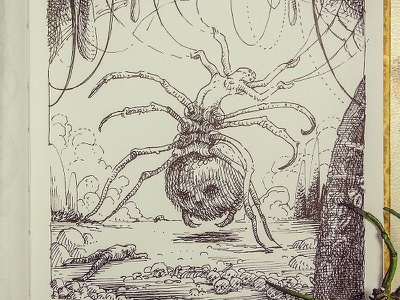 Day 8 Spiders and Webs drawlloween inktober pen and ink crosshatching etching illustration black white graphic