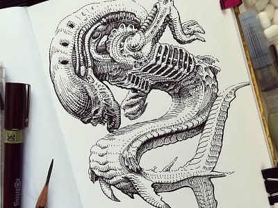 Mermay 15 mermaid cross hatching ink drawing character design concept art mermay