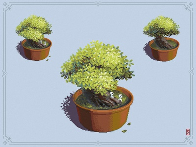 Bonsai Tree By Pako On Dribbble
