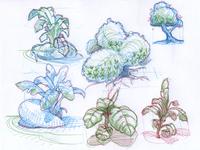 quick organics sketches