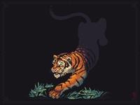 Tiger 270x270px 23 colors