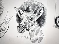 Girafro 2