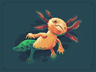 Axolotl aka walking fish water animalism walking fish salamander animal illustration pakopixel gameart 8bit pixel dailies pixelart pixel art axolotl