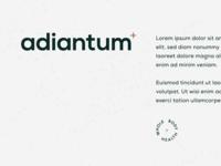 Adiantum #2