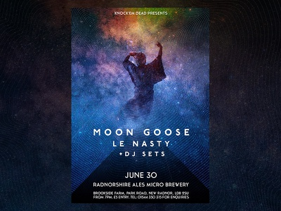 Moon Goose + Le Nasty @ New Radnor psych gig space stars dance goose moon poster ale