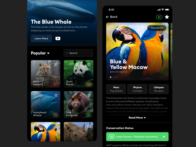 Endangered Animals Resource endangered animals app branding application redesign app design ui