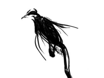 The Raven art tablet illustrations