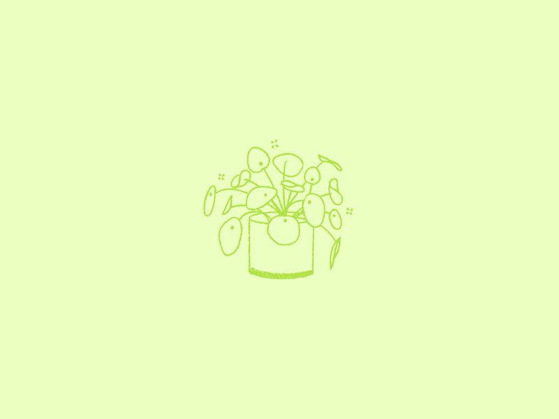 ILLUSTRATION | money plant rebound lime green green illustrators illustrator design spring planter plant lady money plant plant illustration plant illustrator design illustration