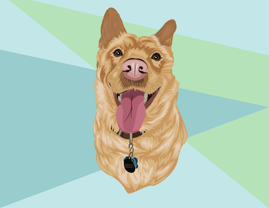 Dog Vector Portrait