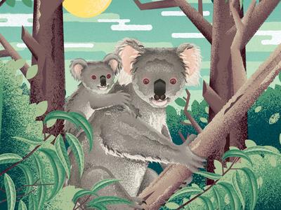 Koala baby foliage food packaging design food packaging tree nature australia wildlife animal koala illustration