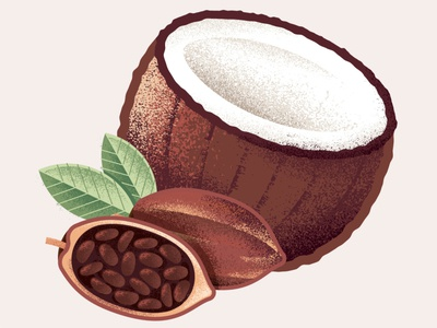 Cocoa Coconut Flavor Icon vector texture packaging package design illustrator illustration icon food coconut cocoa chocolate baby food
