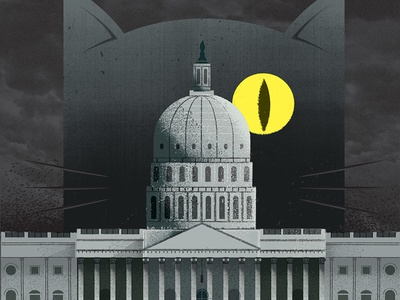 Haunted Capitol moon haunted washington dc architecture building capitol ghost cat washington post distress texture editorial