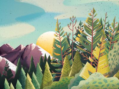 Oregon Mountains pine fir nature woods mountains oregon trees forest sports magazine editorial