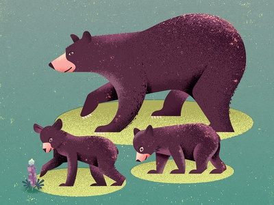 Bear Family family wildlife nature flower animals cubs cub bears bear screenprinting poster illustration