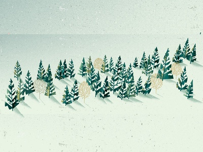 Forest isolation nature snow winter pine fir forest tree distress texture