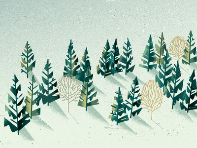 Forest detail isolation nature snow winter pine fir forest tree distress texture