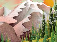 Mount Rainier National Park detail
