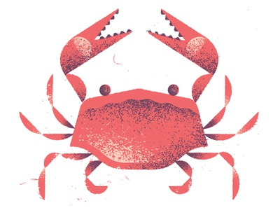 Crab coast aquatic food ocean sea wildlife animal crab distress texture illustration