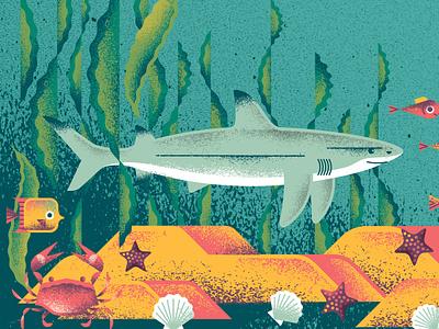 Bumbershoot Shark sea ocean kelp seaweed fish crab shark animal puget sound seattle festival music bumbershoot