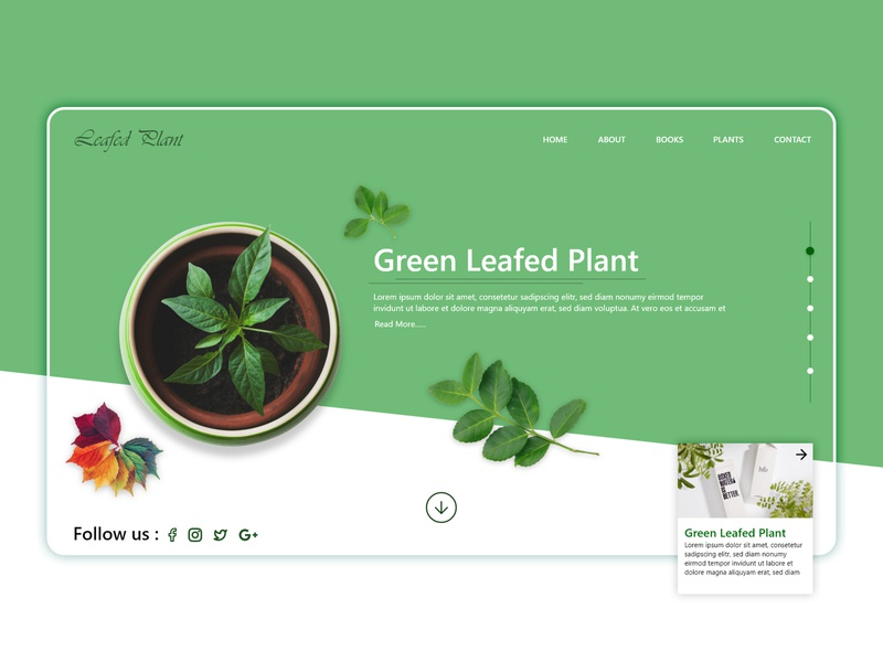 Green leafed plant web template sars infotech user experience design user interface typography intraction interface design inspiration inspiration ux design website template design ui branding