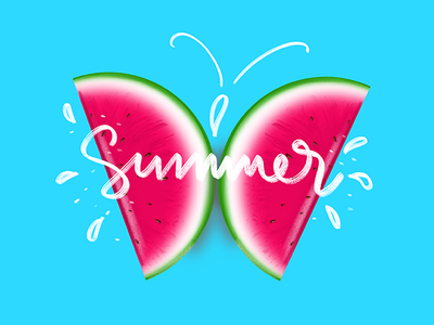 Summer Melon Butterfly procreate typography illustration digital art