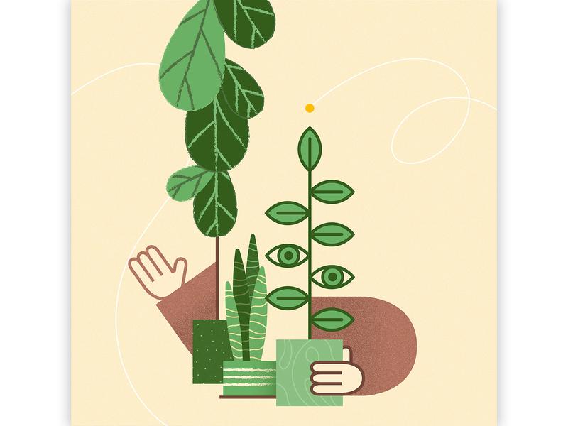 Introvert Plantlover