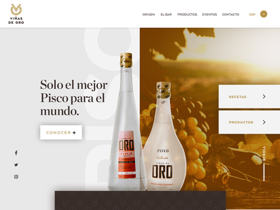 Viñas de oro design web ux design ui