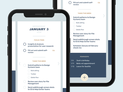 To-do list mockup calendar mobile web app ios native app lists task to-do iphone x iphone