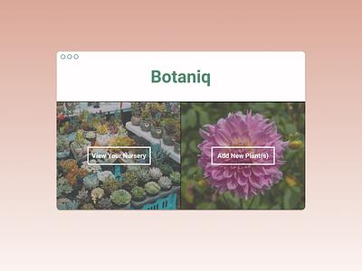 Botaniq - Botany App for Hobbyists app website figma minimal web flat ux ui design