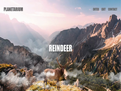 Reindeer Landing Page awareness campaign animal creativity